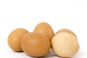 鸡蛋是个好东西但这几类人不能吃看完一身盗汗替家人保藏