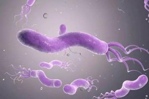 怎么防备幽门螺杆菌